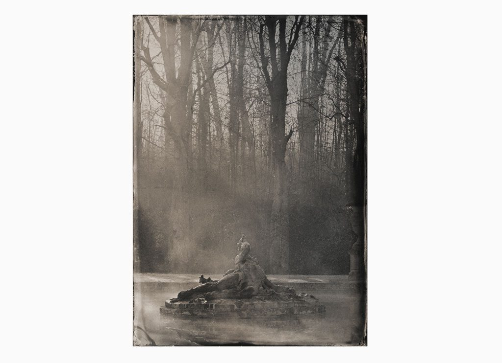 Le Bassin du Parterre de Gazon nº1 - Wet plate collodion as pigment print on cotton paper, 60 x 45 cm